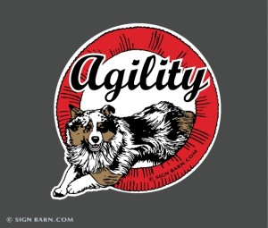 Aussie Agility Ring