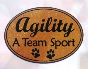 Slideshow Image - agility a team sport