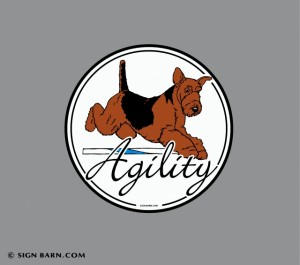 Airedale Agility