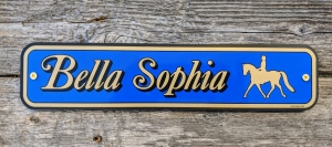 custom-signs_Bella-Sophia_2020-12-14_220726.jpg - Thumb Gallery Image of Custom Signs