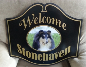 custom-signs_stonehaven_2020-12-14_220426.jpg - Thumb Gallery Image of Custom Signs
